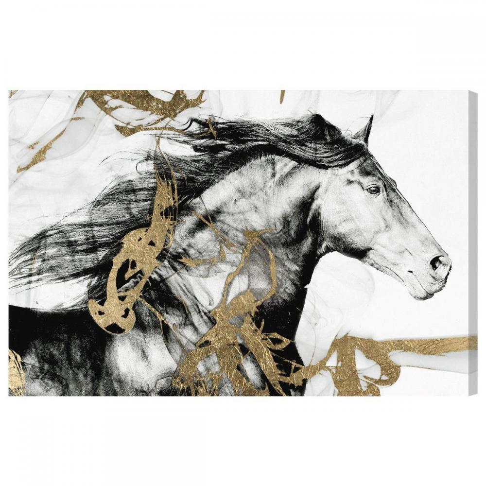 Oliver Gal Gold and Black Beauty キャンバス 76x51(cm) 1