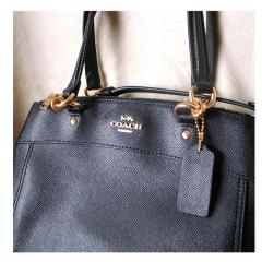 NWT Coach Mini Brooke Carryall F25395 2
