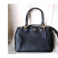 NWT Coach Mini Brooke Carryall F25395